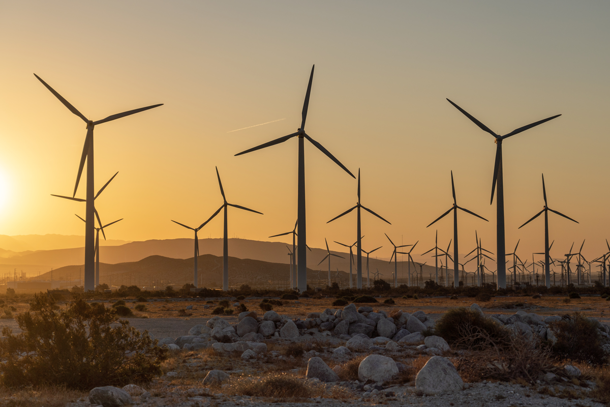 Pathways to Build Back Better: Investing in 100% Clean Electricity
